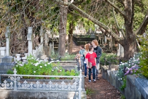 Napier Cemetery Walk and Talk (Primary/Intermediate)